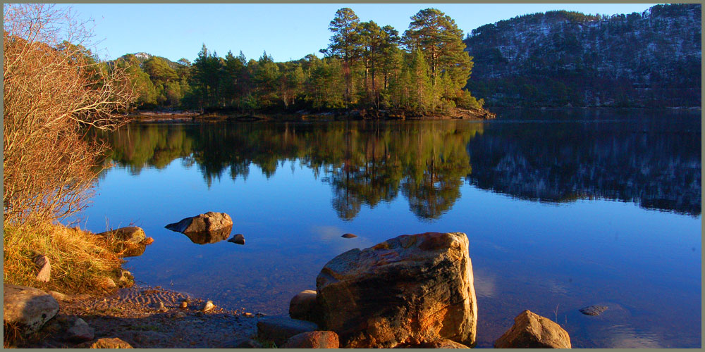 Winter Sun Glen Affric